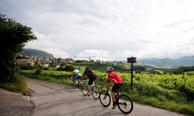 Die schönsten Biketouren zwischen Weinbergen & Dolomiten im Bikehotel Südtirol
